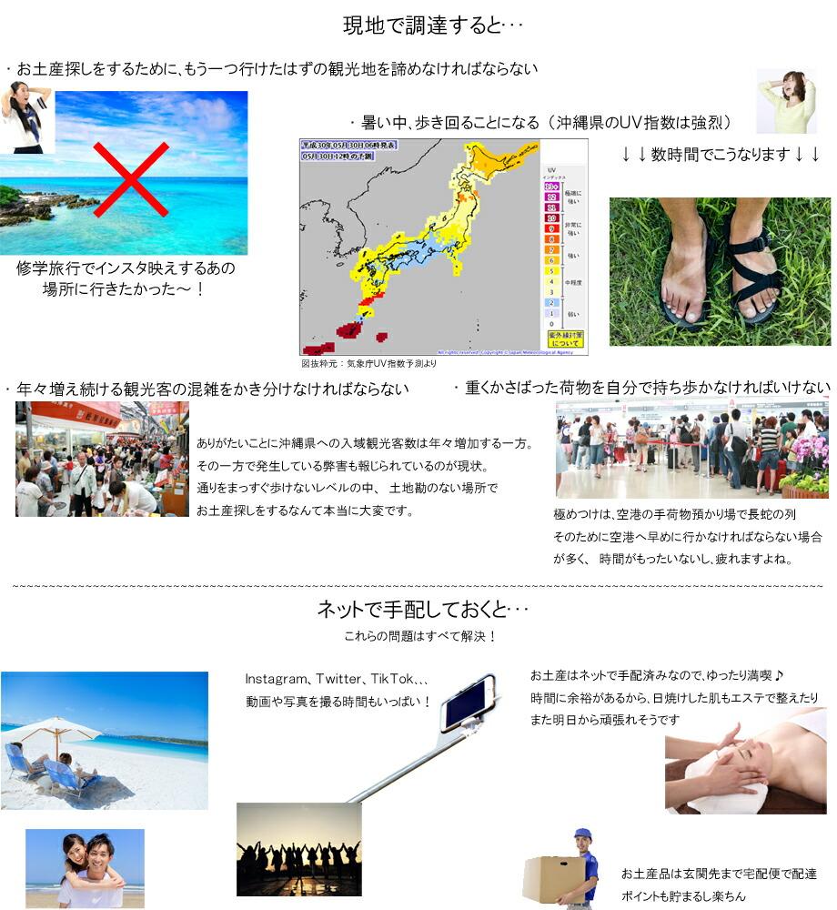 沖縄宝島の役割2