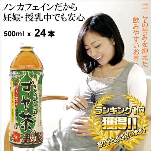 ゴーヤ茶24本セット