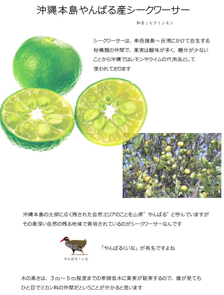 沖縄 シークワーサー 果汁 1