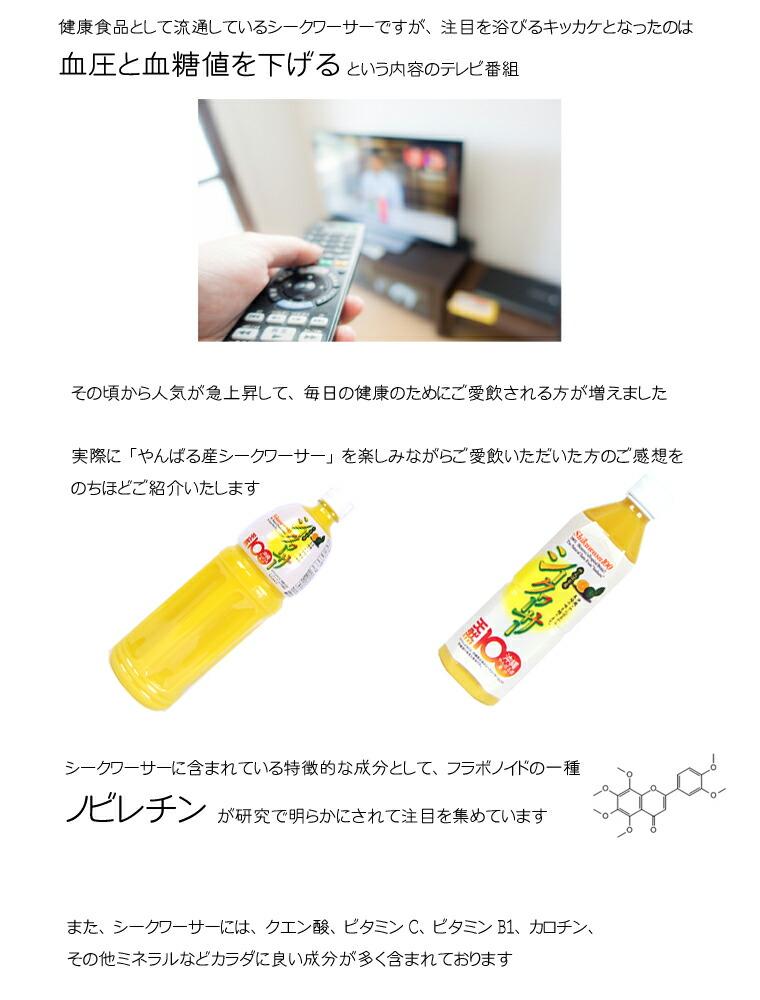 沖縄 シークワーサー 果汁 2