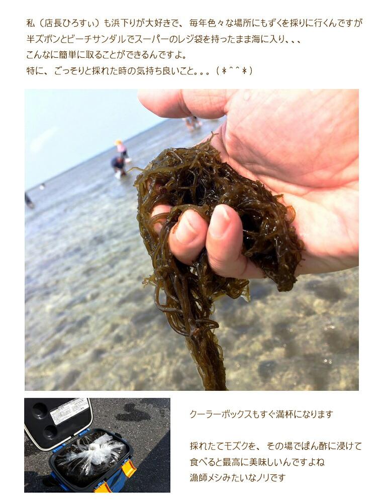 沖縄産太もずく