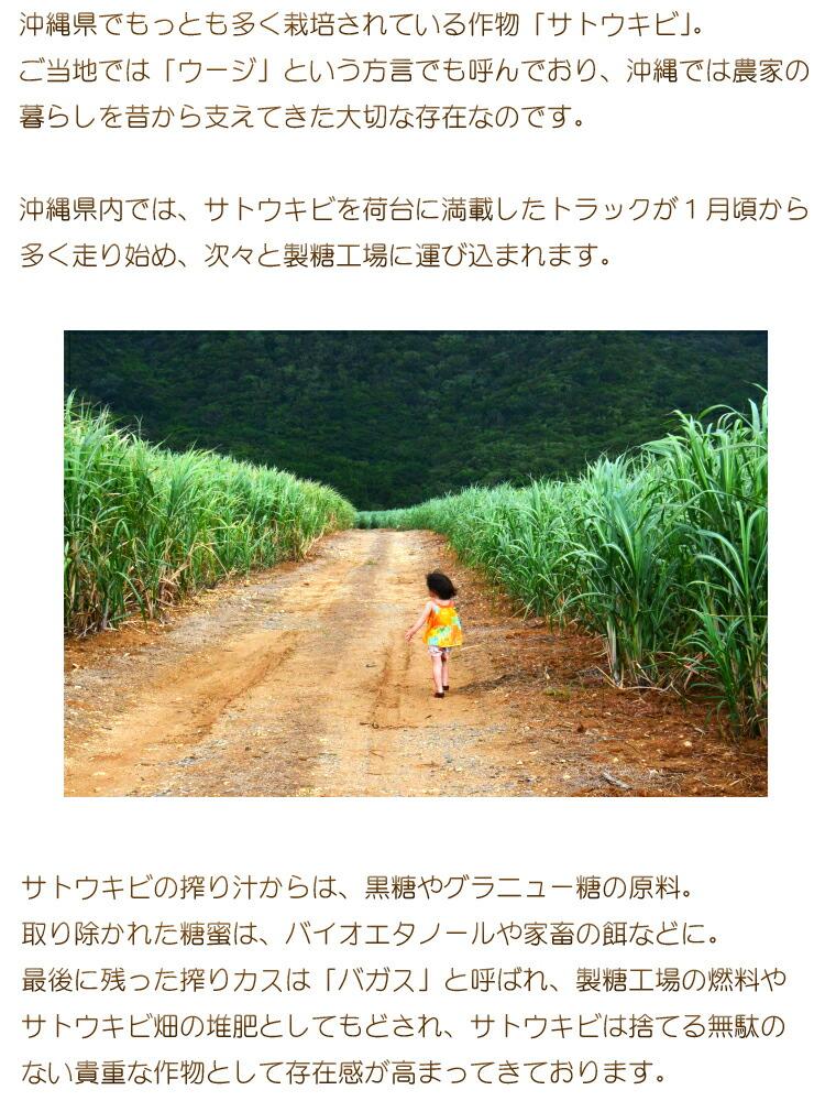 沖縄土産 黒糖