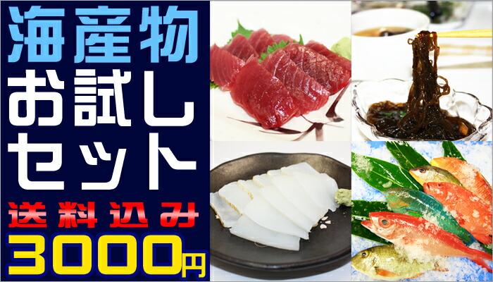 海産物お試しセット!3100円