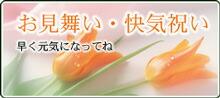 お見舞い・快気祝いの和菓子ギフト