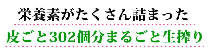 shikuwasa100