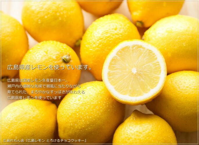 広島れもん舎 広島レモン とろけるチョコクッキー 風季舎
