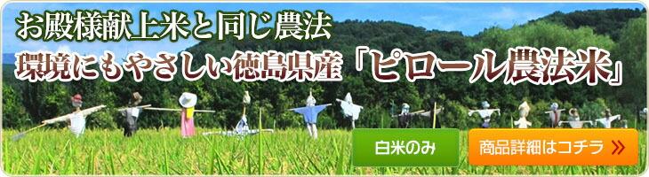 ピロール農法米 コシヒカリ