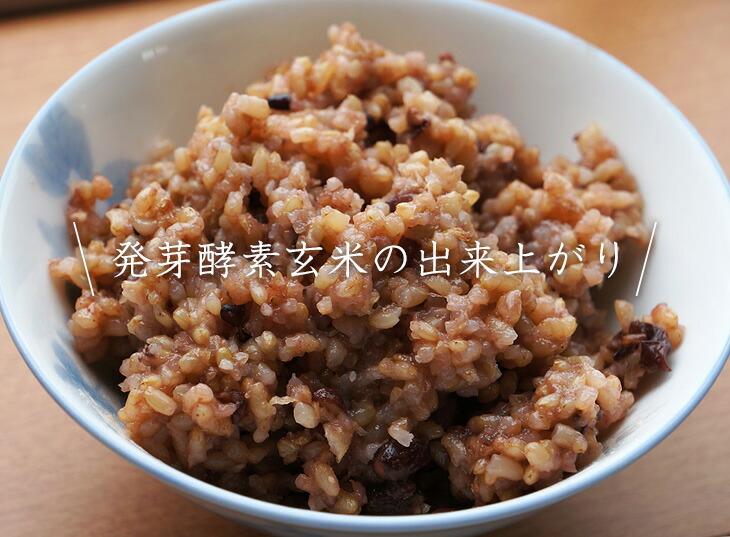 発芽酵素玄米の出来上がり