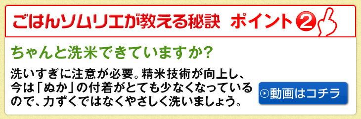 ご飯ソムリエが教える秘訣ポイント1!ちゃんと洗米できていますか?洗いすぎに注意が必要。精米技術が向上し、今は「ぬか」の付着がとても少なくなっているので、力ずくではなくやさしく洗いましょう。