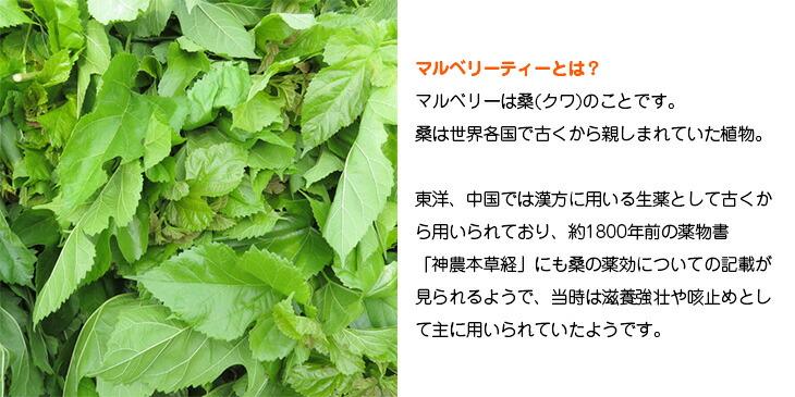 マルベリーは桑のことです。東洋、中国では漢方に用いる生薬として古くから用いられております。