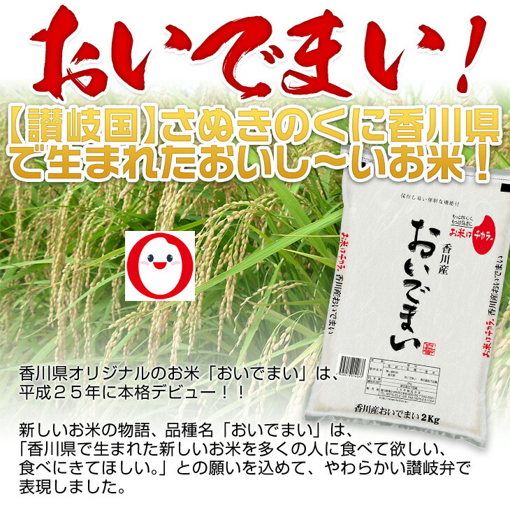 【讃岐国】さぬきのくに香川県で生まれたおいし~いお米!おいでまい