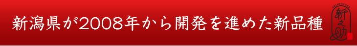 新潟県が2008年から開発を進めた新品種