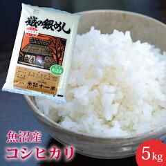 【楽ギフ_のし】【お米】魚沼産コシヒカリ5kg送料無料おいしいお米こしひかり5キロ