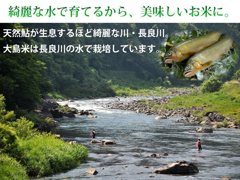 長良川の綺麗な水で作るからおいしい