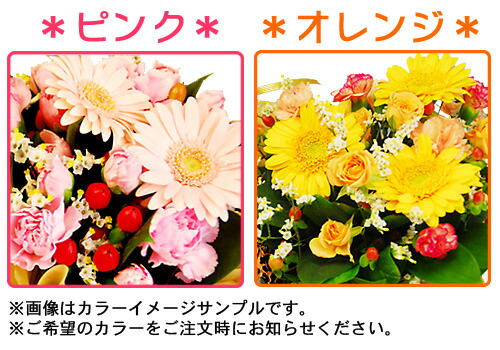 お花のカラーイメージ