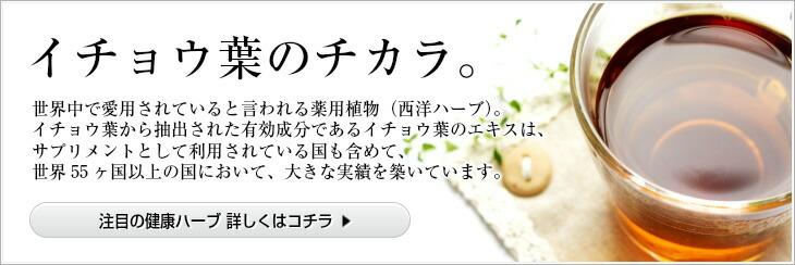 焙煎 イチョウヨウ(銀杏葉茶)1.5Kg(500g×3個)