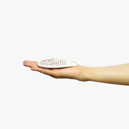 手のひらサイズです