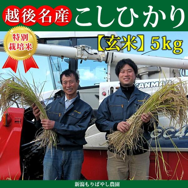 新潟県産特別栽培米こしひかり5kg
