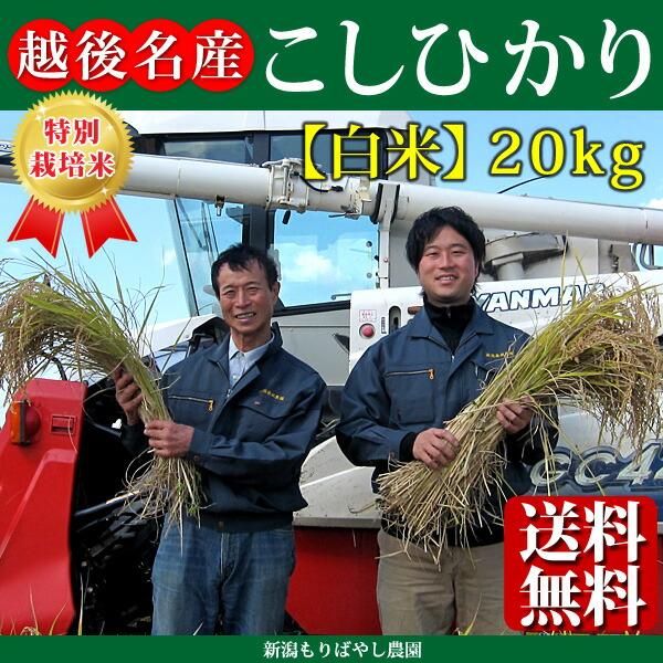 新潟県産特別栽培米こしひかり20kg