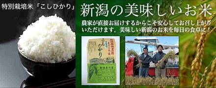 新潟のおいしいお米