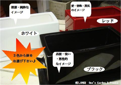 3色のロングインテリア陶器鉢をご用意致しております♪