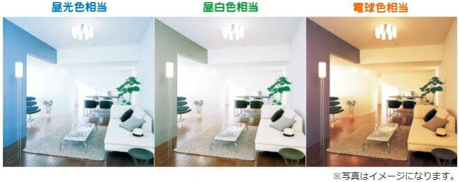 pana_led_color.jpg