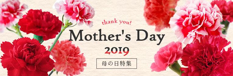 5月12日母の日特集