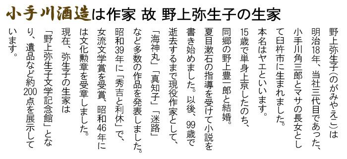 野上弥生子 のがみやえこ 臼杵市 生家 夏目漱石 小説家 海神丸 真知子 迷路 女流文学賞