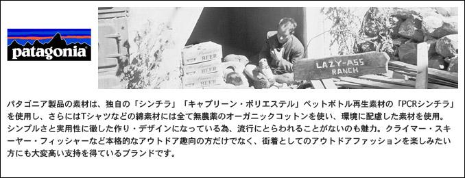 【SALE】【国内正規品】パタゴニアブランド説明
