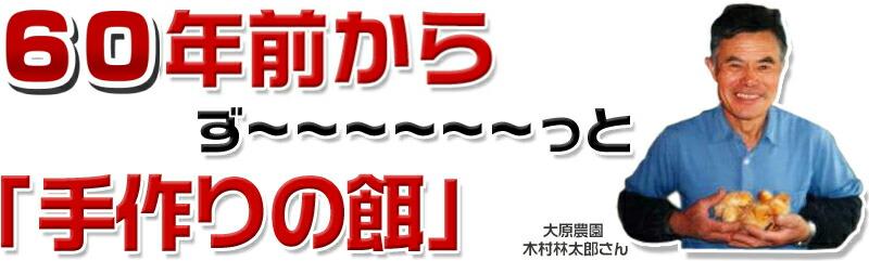 49年前からず〜〜〜〜〜〜っと「手作りの餌」