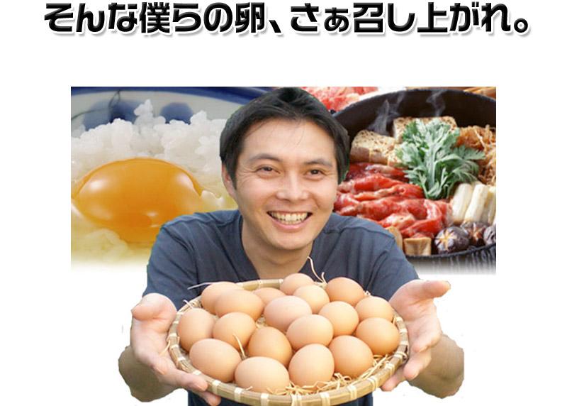 そんな僕らの卵、さぁ召し上がれ。
