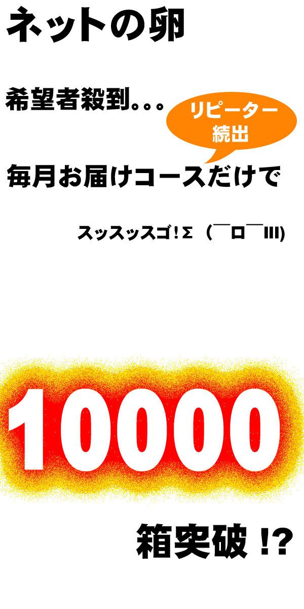 10000セット