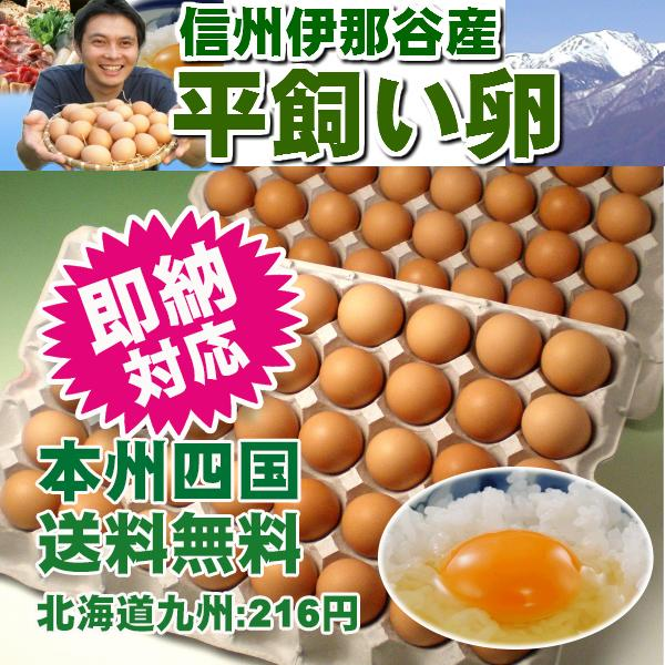 平飼い卵80個