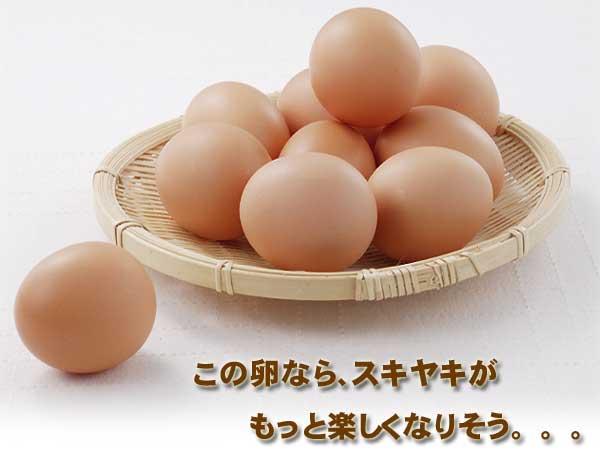 カゴに入れた朝取りの有精卵
