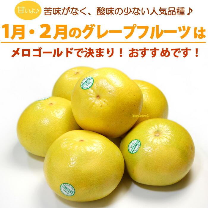 1〜2月のグレープフルーツはメロゴールド!