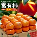 九度山の富有柿
