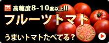 フルーツトマト特集