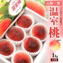 山梨 温室桃