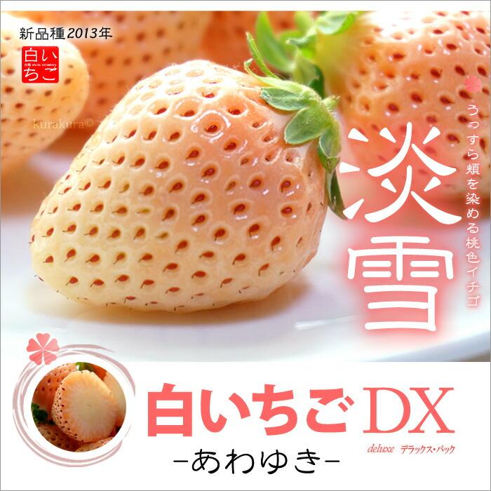 白イチゴ淡雪DX2P販売/通販