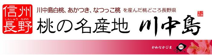 桃の名産地!信州川中島