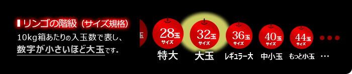 リンゴ規格サイズ図