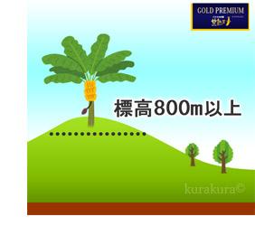 高地800m栽培イメージ