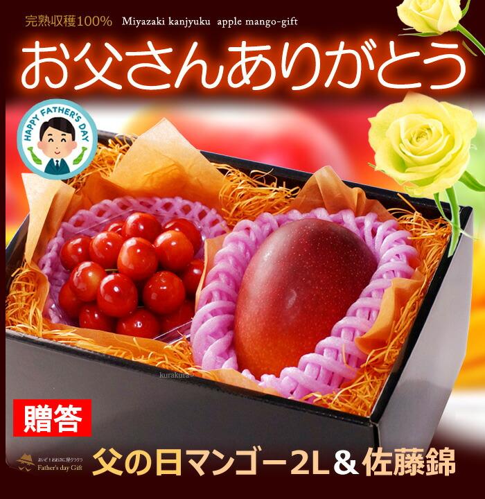 父の日みやざき完熟マンゴー(2L1玉)サクランボ詰め合わせギフト販売/購入