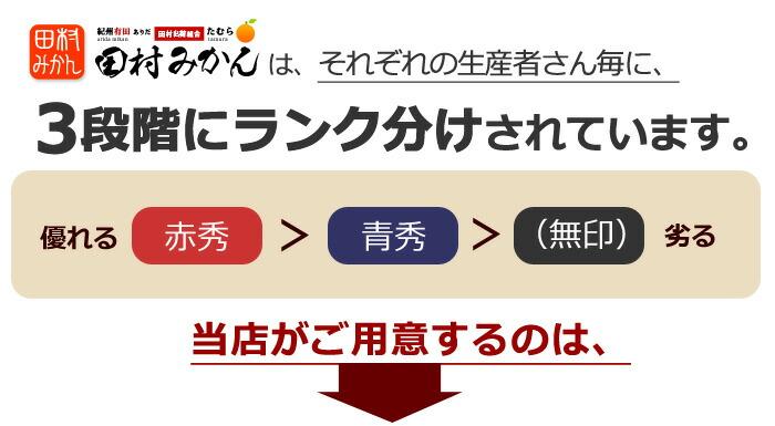 田村みかん3段階に等級ランク分け