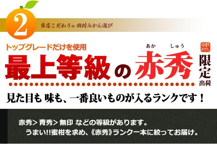 田村みかん2_最上等級の【赤秀】ランク限定販売