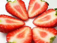 紅ほっぺ苺いちご「赤い果肉」