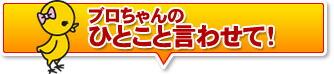 手羽先 広島/尾道 オオニシ