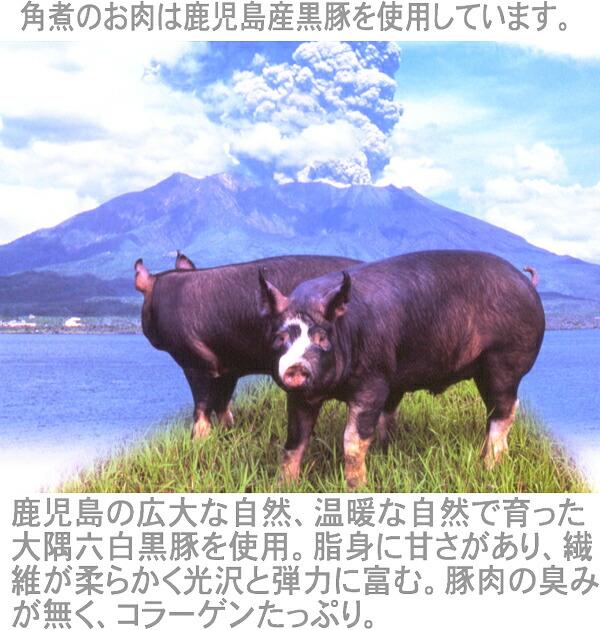 黒豚角煮 鹿児島の広大な自然、温暖な自然で育った大隅六白黒豚を使用。脂身に甘さがあり、繊維が柔らかく光沢と弾力に富む。豚肉の臭みがなくコラーゲンたっぷりです。