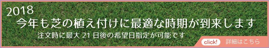今年も芝の植え付けに最適な時期が到来します