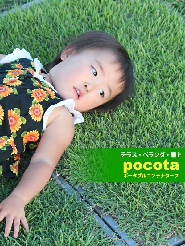 芝生 ベランダ 暑さ対策 緑化 天然芝 テラス コンクリート 人工芝 送料無料
